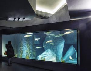 Museu Marítimo e Aquário dos Bacalhaus
