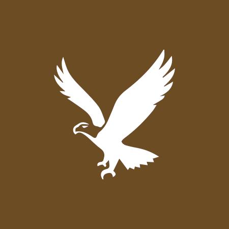 Birdwatching - O que Fazer? Estalagem Pateira de Fermentelos